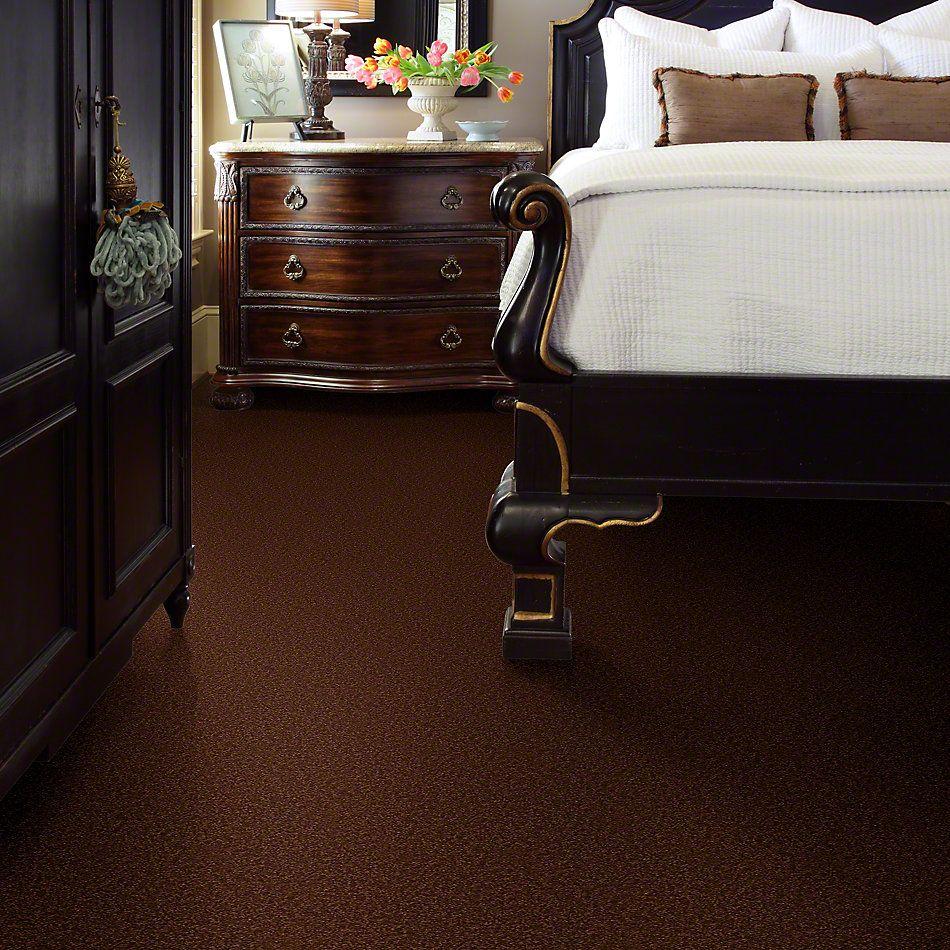 Shaw Floors Magic At Last II 12 Cocoa 00707_E0201
