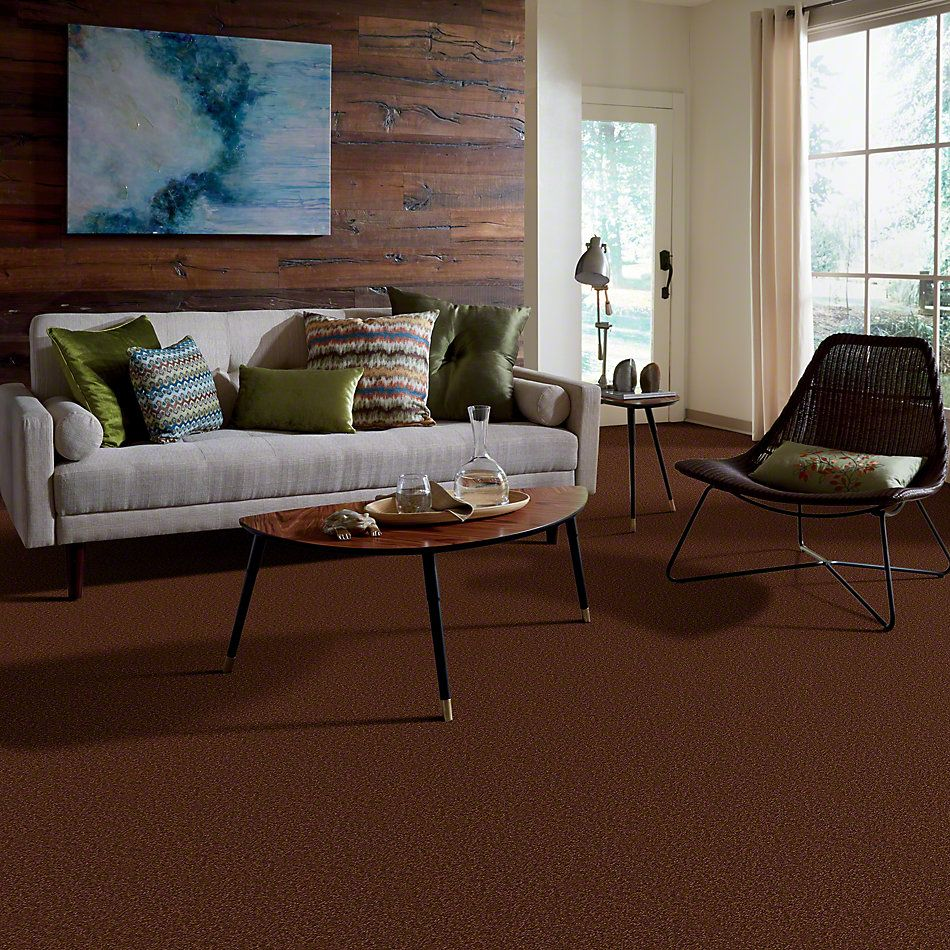 Shaw Floors Foundations Sandy Hollow Classic III 12′ Tortoise Shell 00707_E0552
