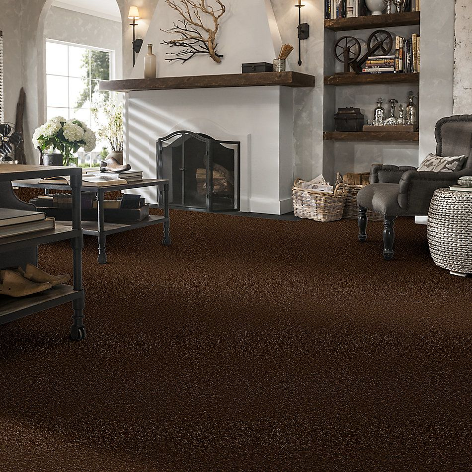 Shaw Floors Value Collections Passageway 1 12 Net Patina 00707_E9152