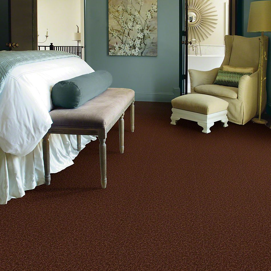 Shaw Floors SFA Shingle Creek Iv 15′ Tortoise Shell 00707_EA519