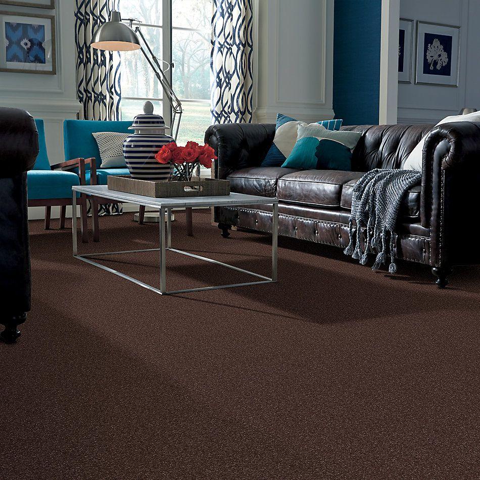 Shaw Floors Trenton Heights Maple 00707_FQ279