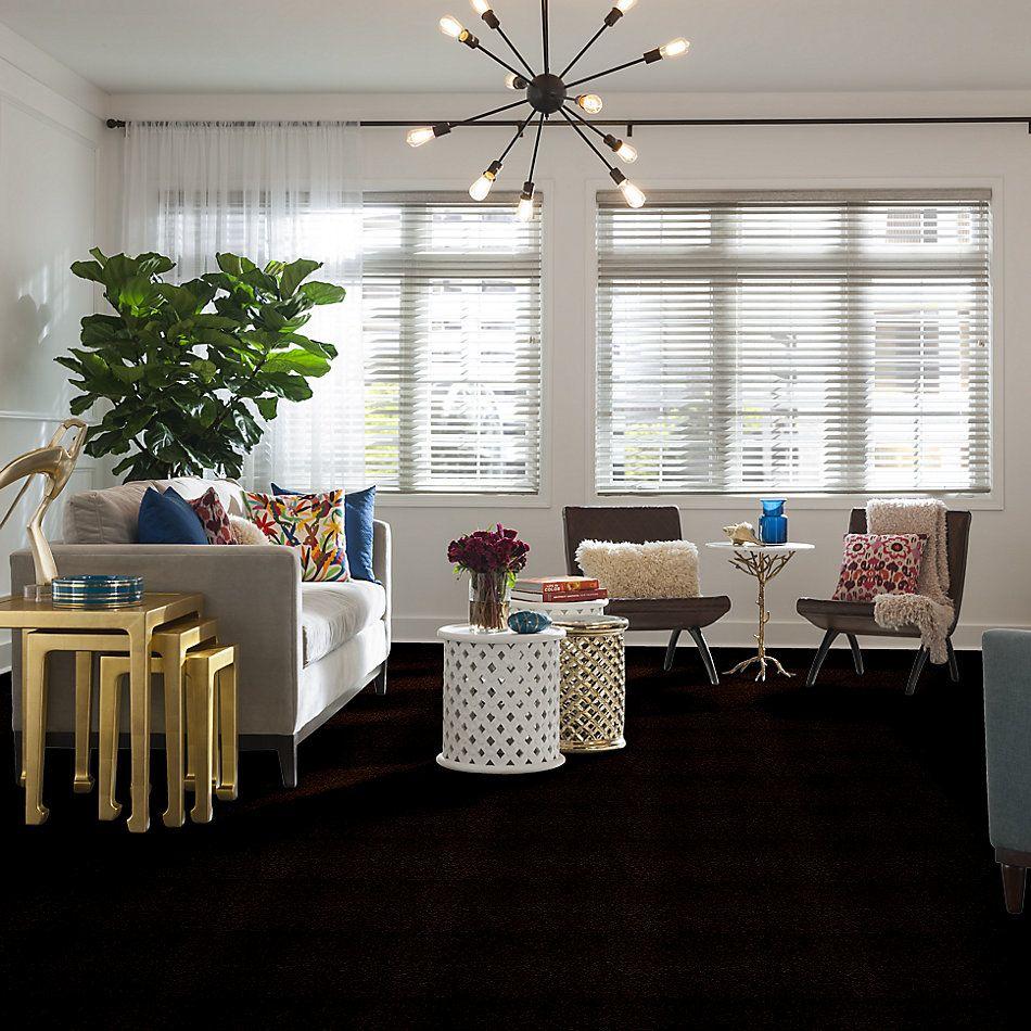 Shaw Floors Shaw Floor Studio Home News II 12′ Falcon Brown 00707_FS130