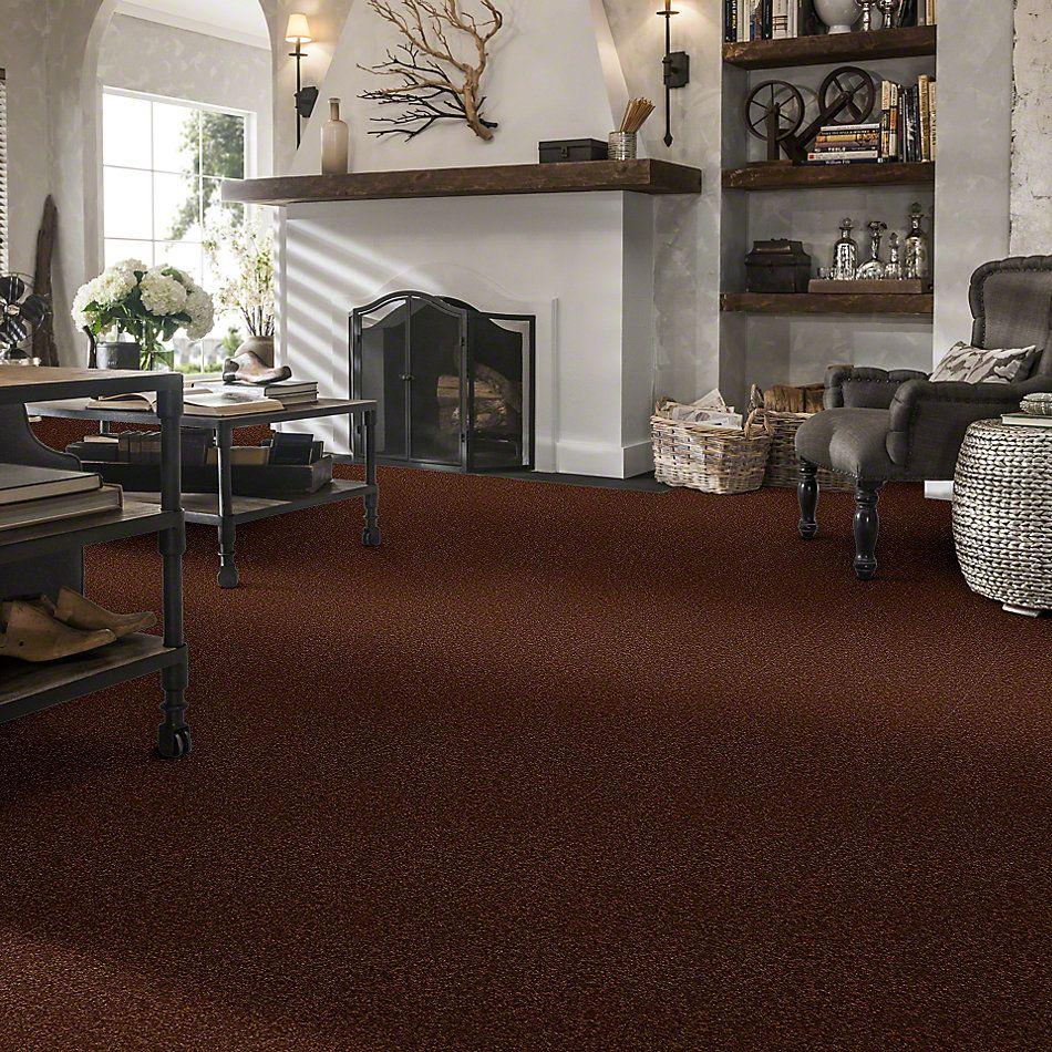 Shaw Floors Anso Premier Dealer Great Effect II 15′ Tortoise Shell 00707_Q4330