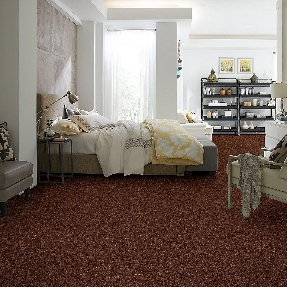 Shaw Floors Shaw Floor Studio Bright Spirit I 15′ Tortoise Shell 00707_Q4649