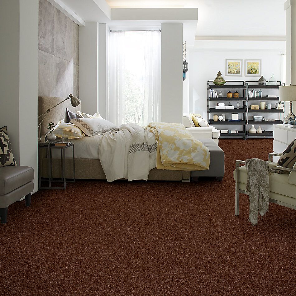 Shaw Floors Shaw Floor Studio Bright Spirit II 12′ Tortoise Shell 00707_Q4650