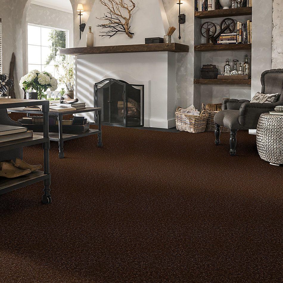 Shaw Floors Queen Harborfields III 12′ Patina 00707_Q4722