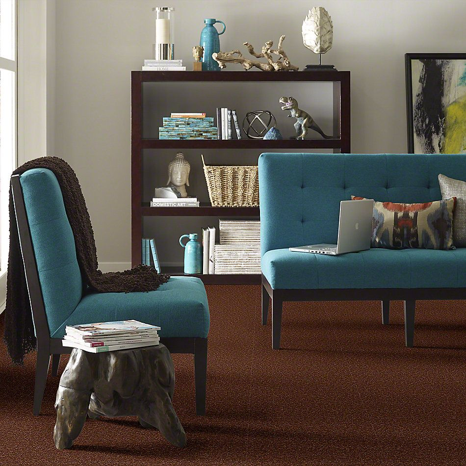 Shaw Floors Shaw Design Center Sweet Valley I 15′ Tortoise Shell 00707_QC421