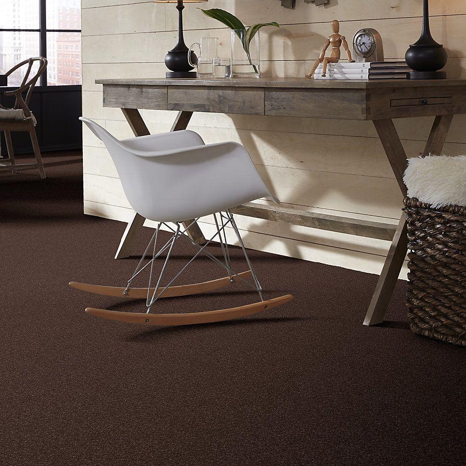 Shaw Floors Roll Special Xv694 Maple 00707_XV694