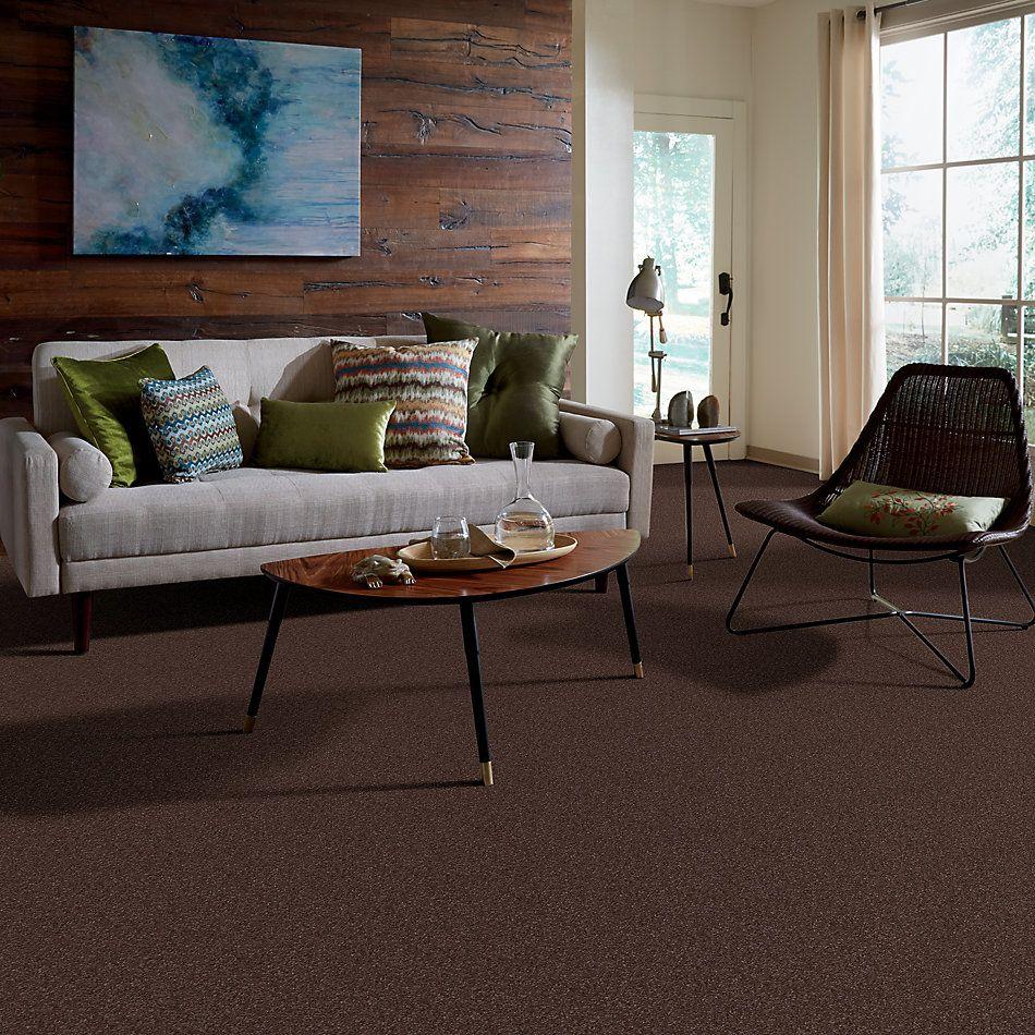 Shaw Floors Roll Special Xv815 Maple 00707_XV815