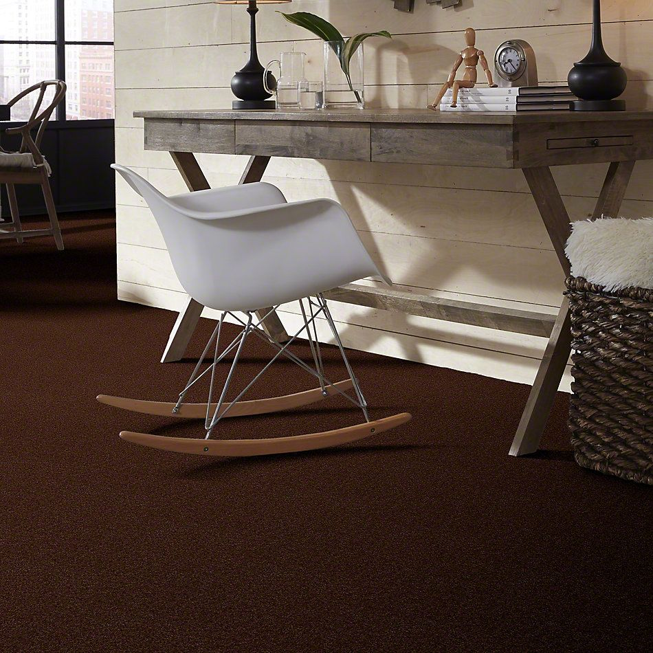 Shaw Floors Shaw Design Center Winters Home Mocha 00708_5C582