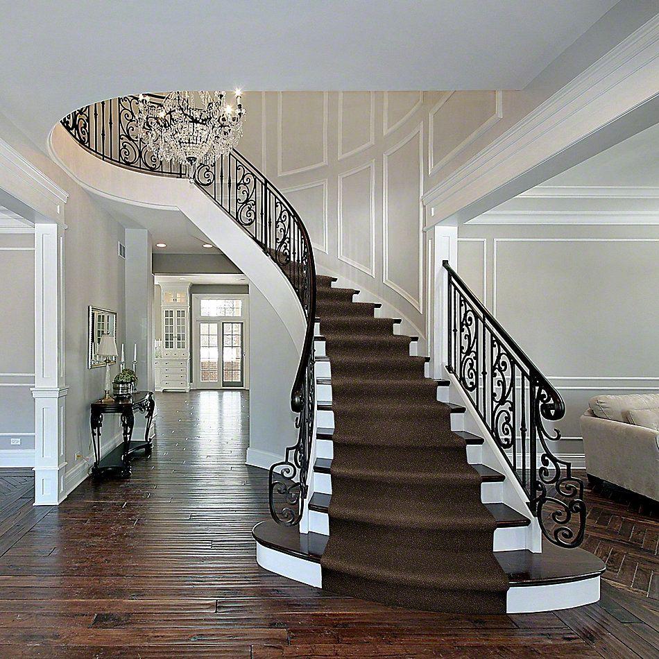 Shaw Floors Shaw Design Center Fantastical Sedona 00708_5C790