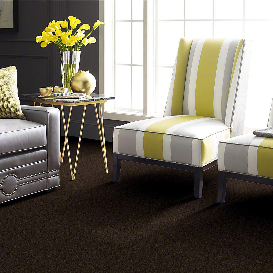 Shaw Floors Magic At Last I 12′ Dark Chocolate 00708_E0200