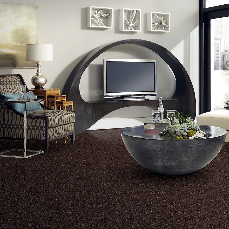 Shaw Floors Magic At Last Iv 15′ Dark Chocolate 00708_E0237