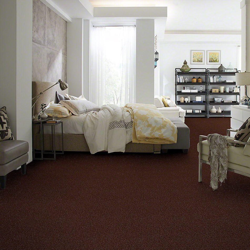 Shaw Floors SFA Weatherford Mocha 00708_EA009