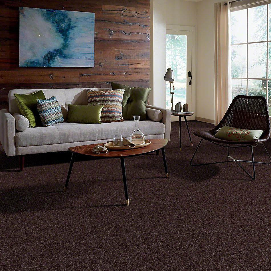 Shaw Floors Magic At Last II 12 Dark Chocolate 00708_E0201