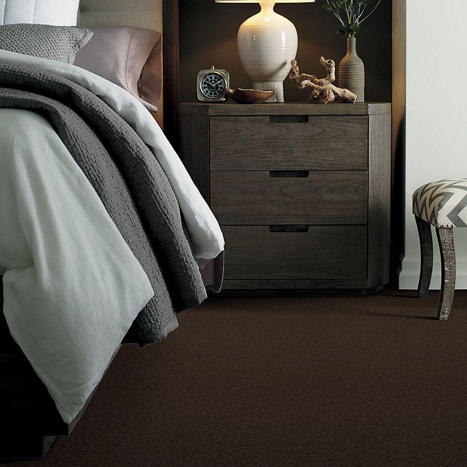 Shaw Floors Sandy Hollow Classic I 12′ Tundra 00708_E0548