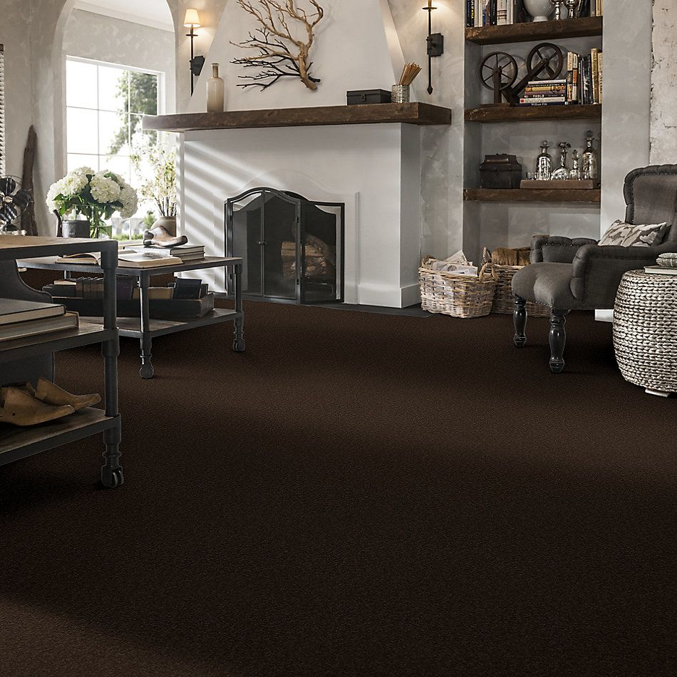 Shaw Floors Sandy Hollow Classic I 12′ Tundra 00708_E0548