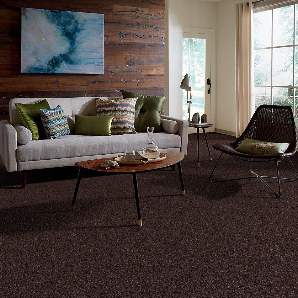 Shaw Floors Foundations Sandy Hollow Classic II 15′ Tundra 00708_E0551