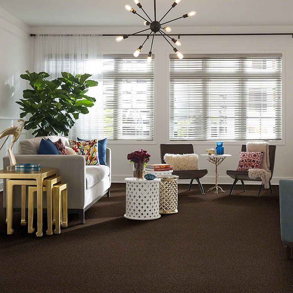 Shaw Floors That's Right Sedona 00708_E0812