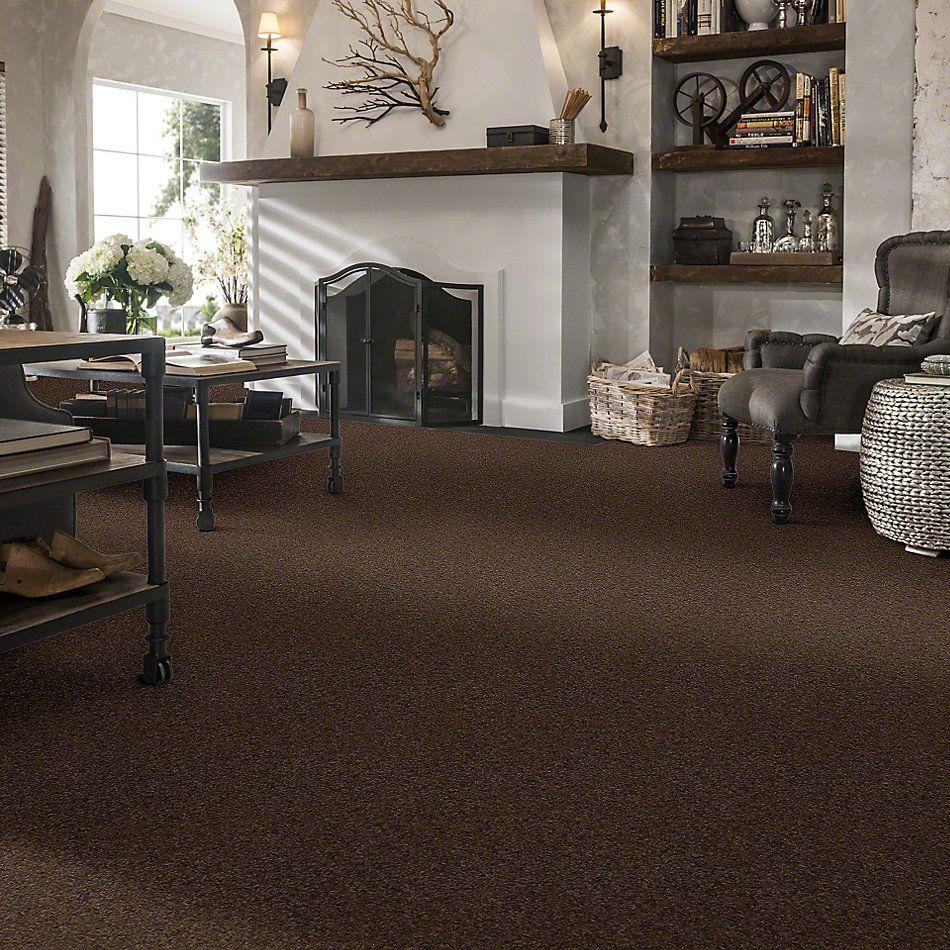 Shaw Floors Value Collections Xvn04 Sedona 00708_E1234