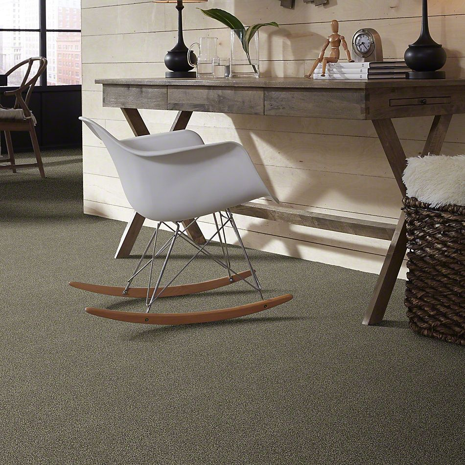 Shaw Floors Bellera Just A Hint I Dreamy Taupe 00708_E9640