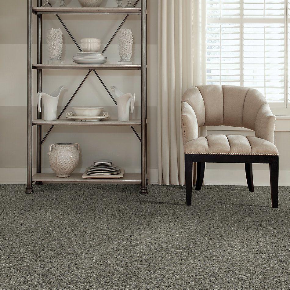 Shaw Floors Bellera Make Your Mark Net Dreamy Taupe 00708_E9792