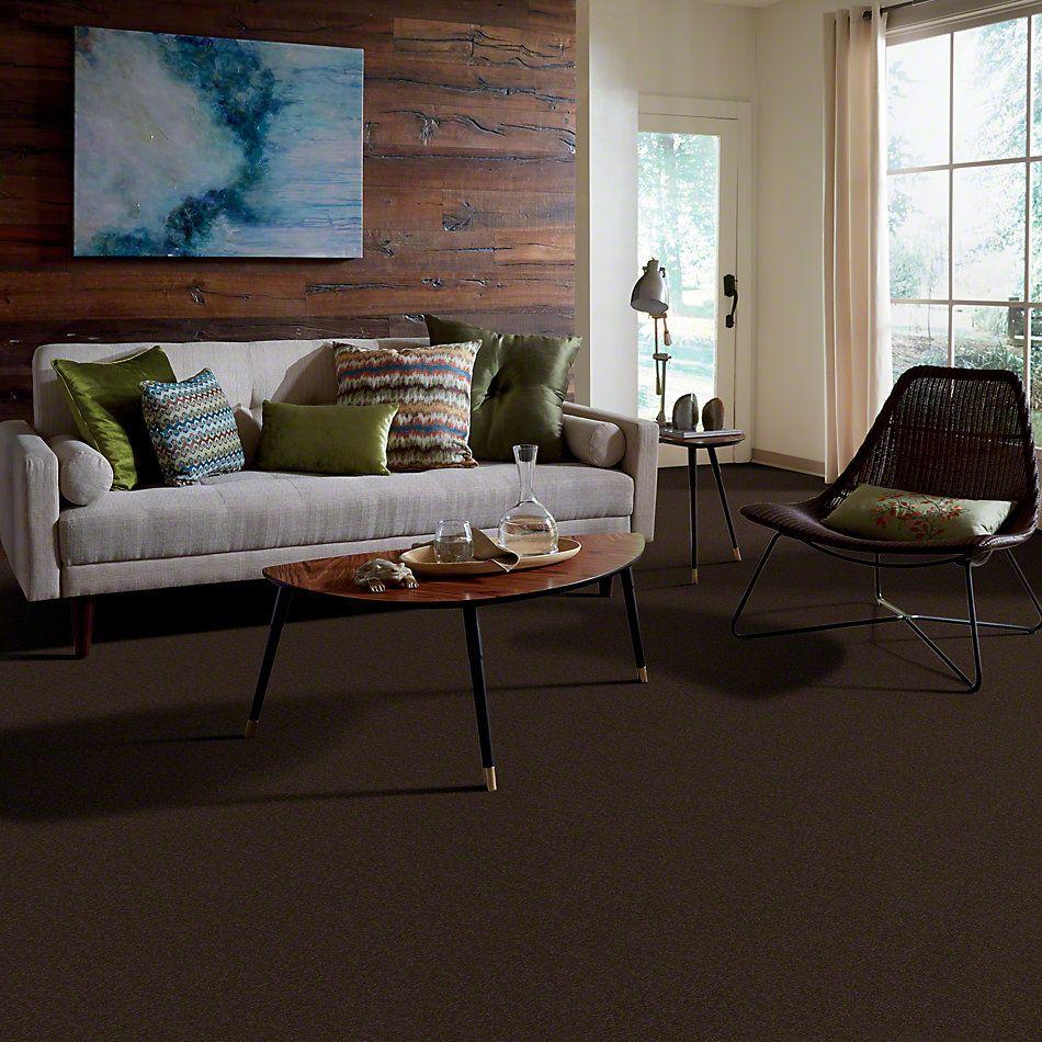 Shaw Floors SFA Shingle Creek I 12 Tundra 00708_EA512