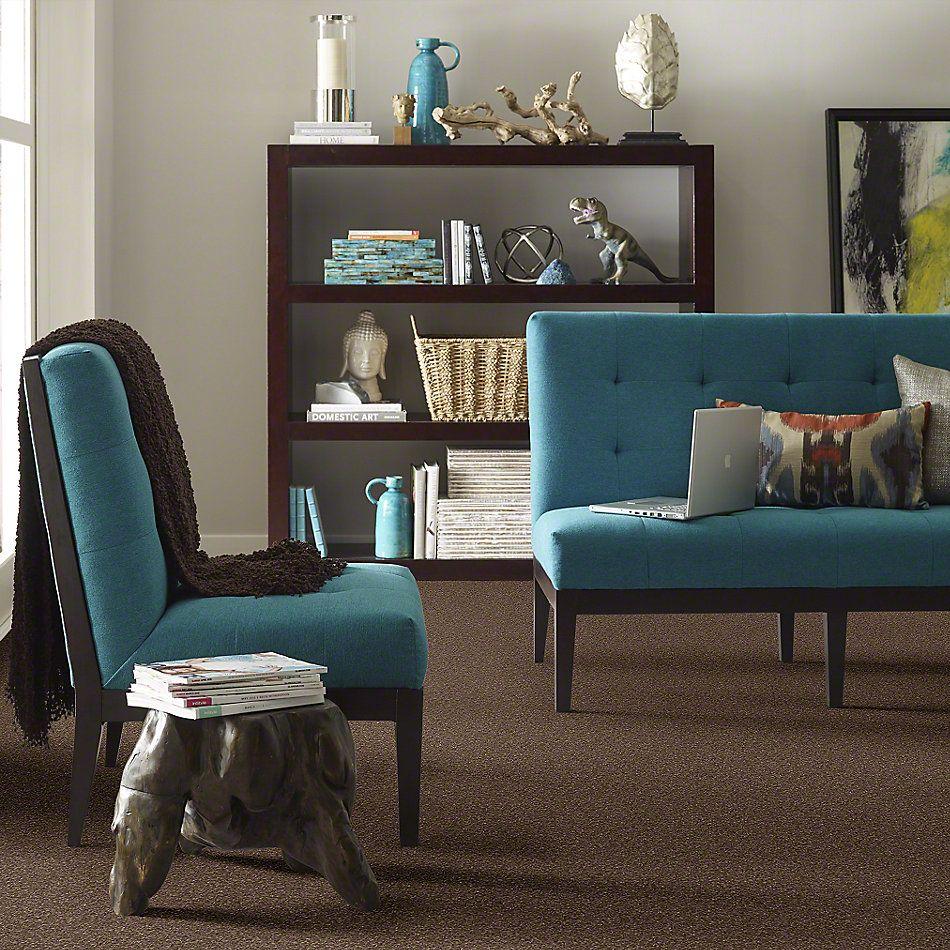 Shaw Floors SFA Sweet Life Sedona 00708_EA606