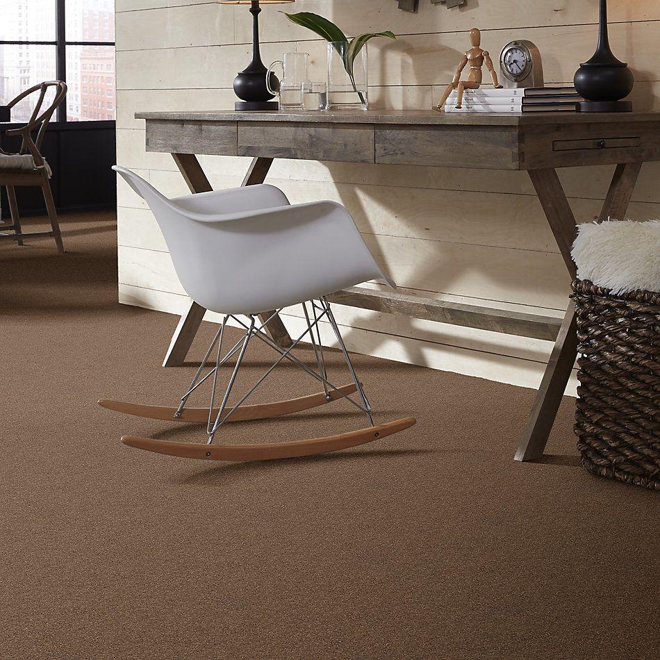 Shaw Floors SFA Unparalleled Delight III 15′ Brownie 00708_EA671