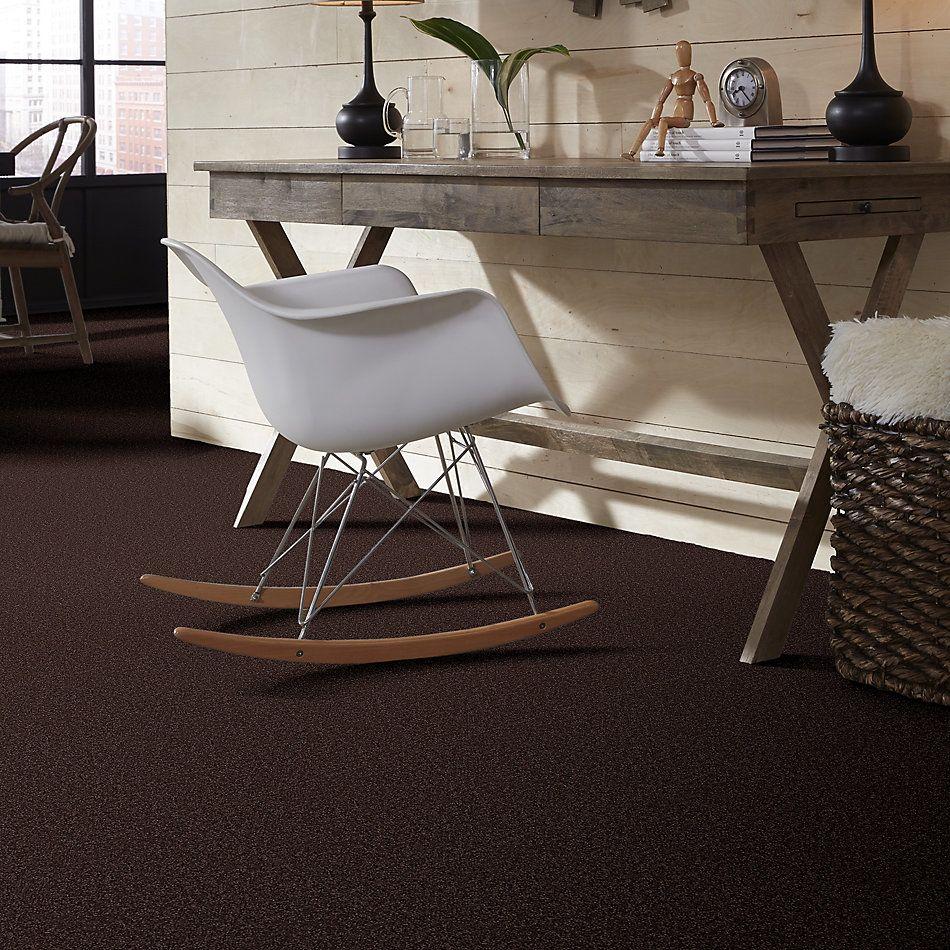 Shaw Floors Shaw Flooring Gallery Practical Magic 15′ Tundra 00708_Q332G
