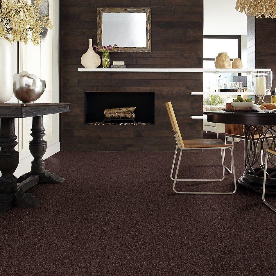 Shaw Floors Shaw Floor Studio Bright Spirit I 15′ Tundra 00708_Q4649