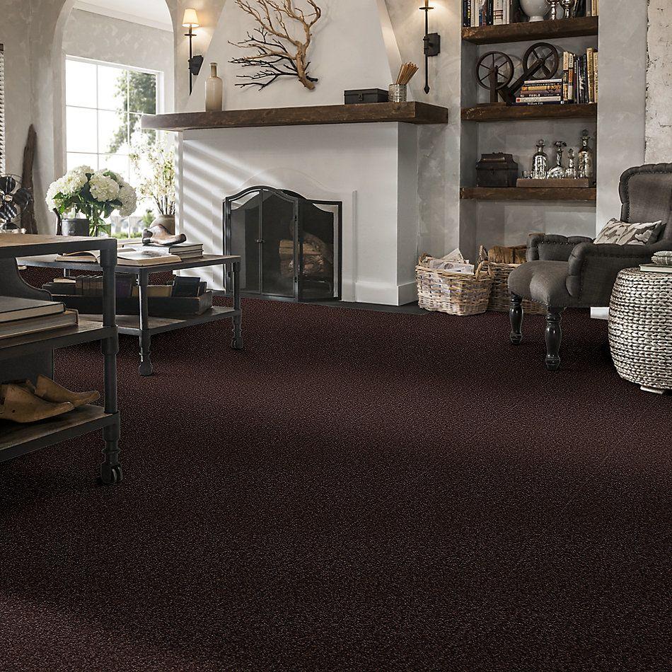 Shaw Floors Shaw Floor Studio Bright Spirit II 15′ Tundra 00708_Q4651