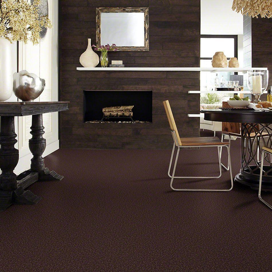 Shaw Floors Shaw Design Center Sweet Valley III 12′ Tundra 00708_QC424