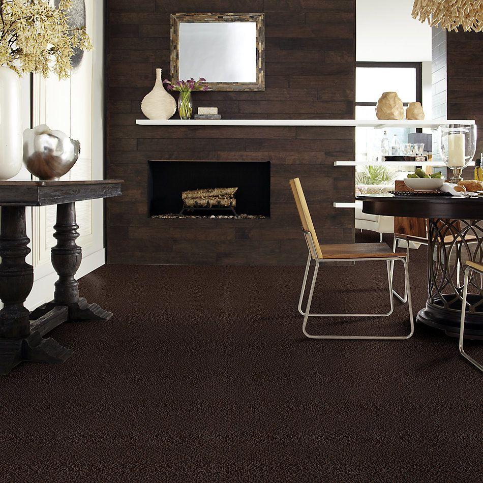 Shaw Floors Roll Special Xv480 Brown Sugar 00708_XV480