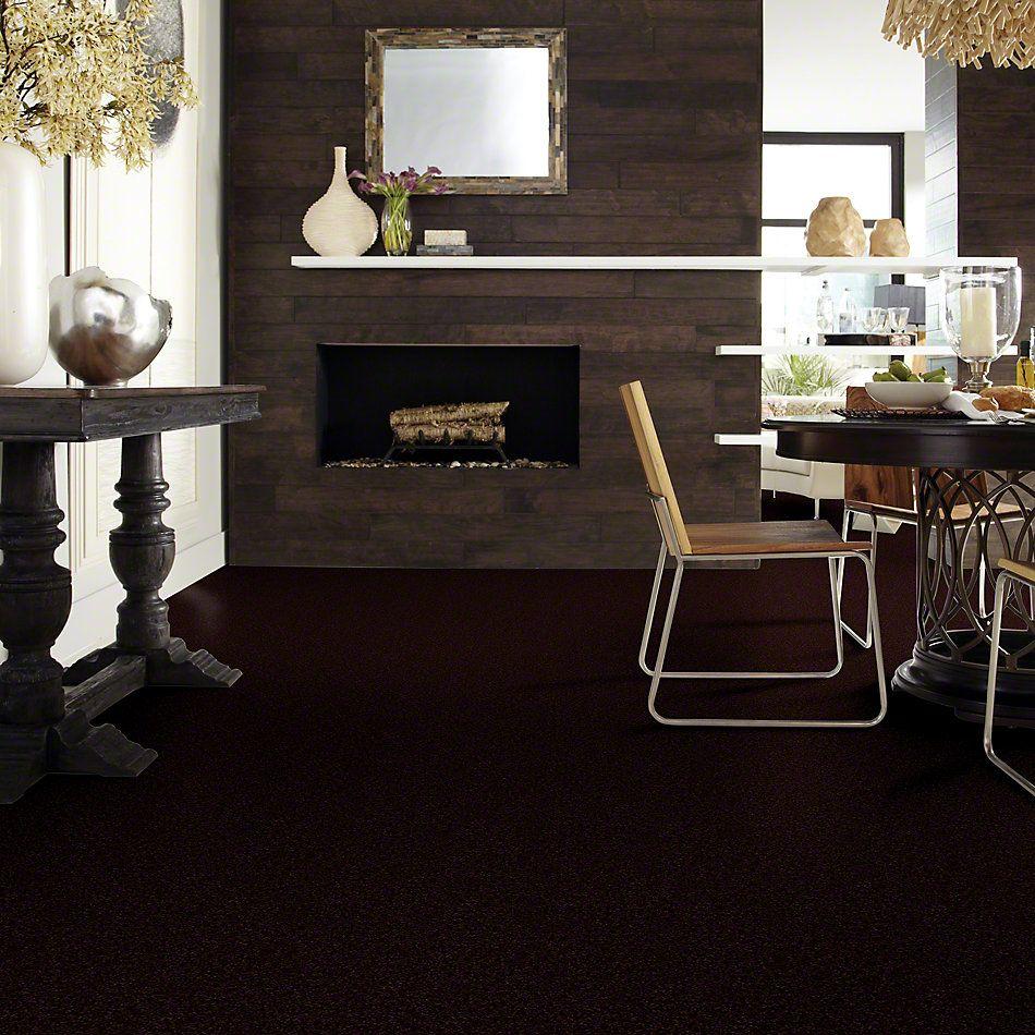 Shaw Floors Shaw Flooring Gallery Highland Cove III 12 Dark Roast 00709_5223G