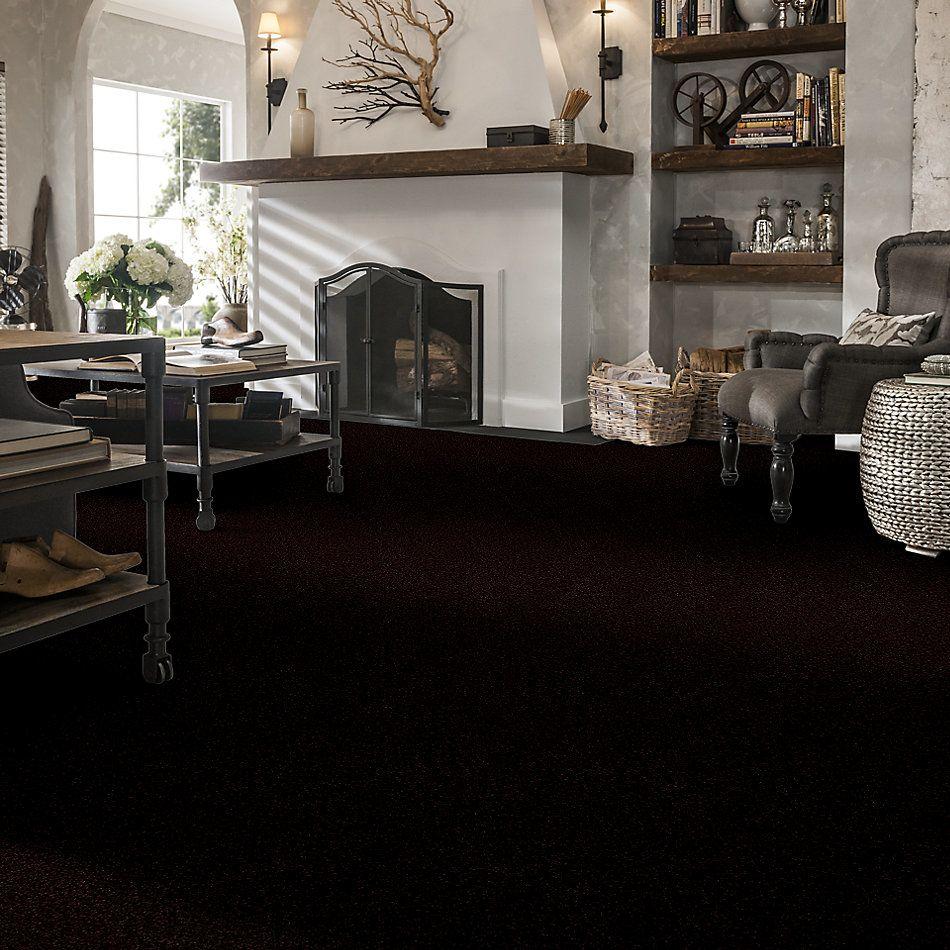 Shaw Floors Shaw Floor Studio Porto Veneri II 12′ Dark Roast 00709_52U56