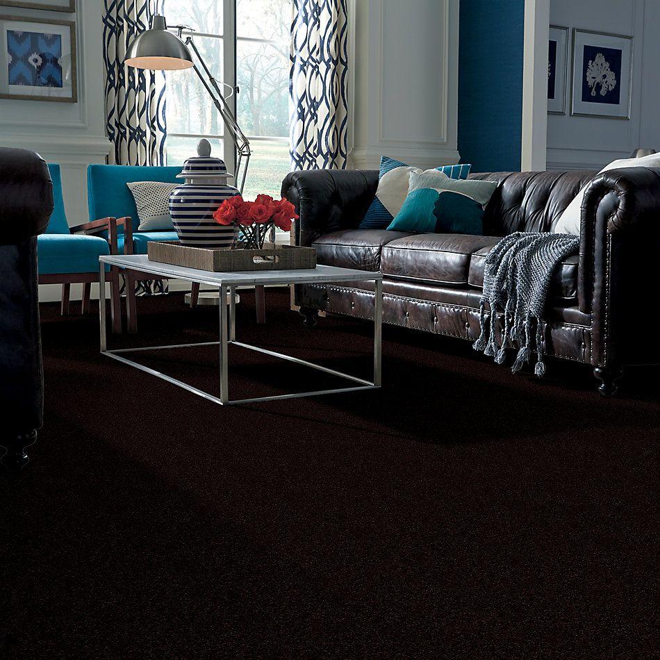 Shaw Floors Shaw Floor Studio Porto Veneri III 12′ Dark Roast 00709_52U58