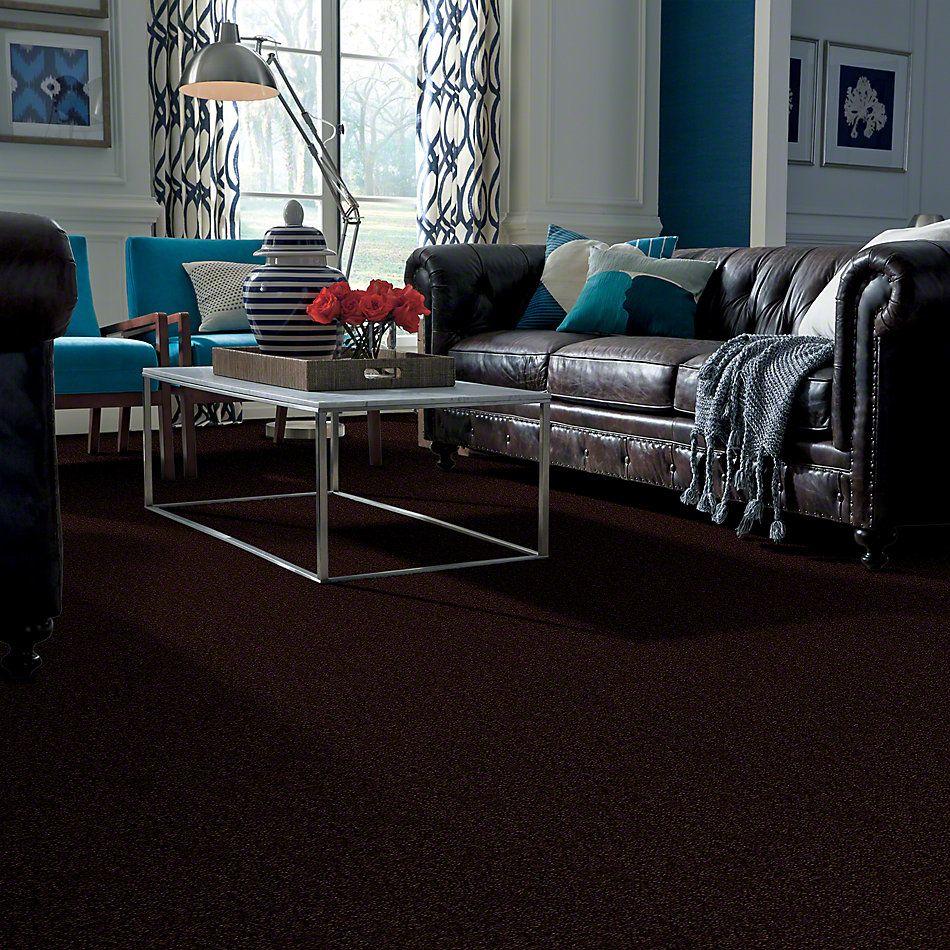 Shaw Floors Shaw Design Center Different Times I 12 Dark Roast 00709_5C492