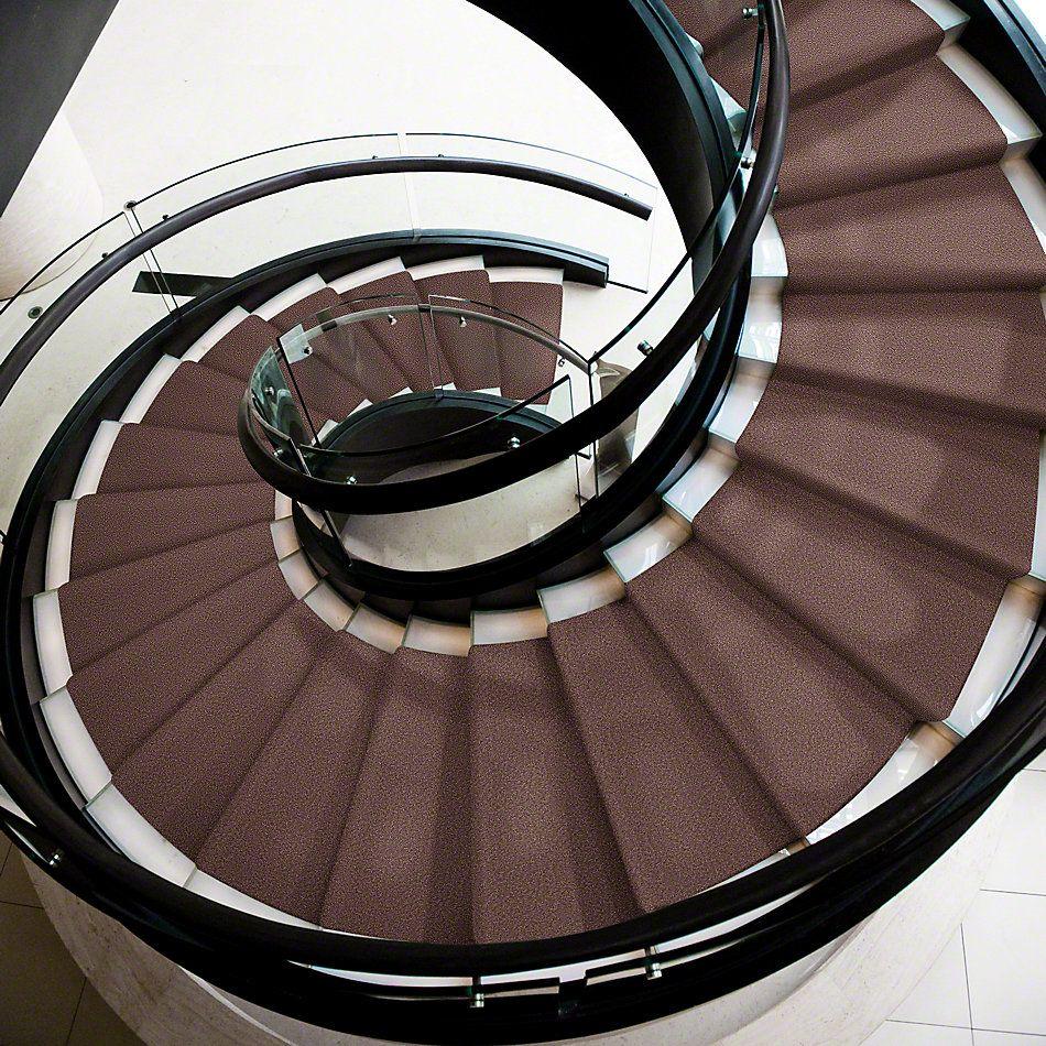 Shaw Floors Magic At Last III 12′ Chinchilla 00709_E0204