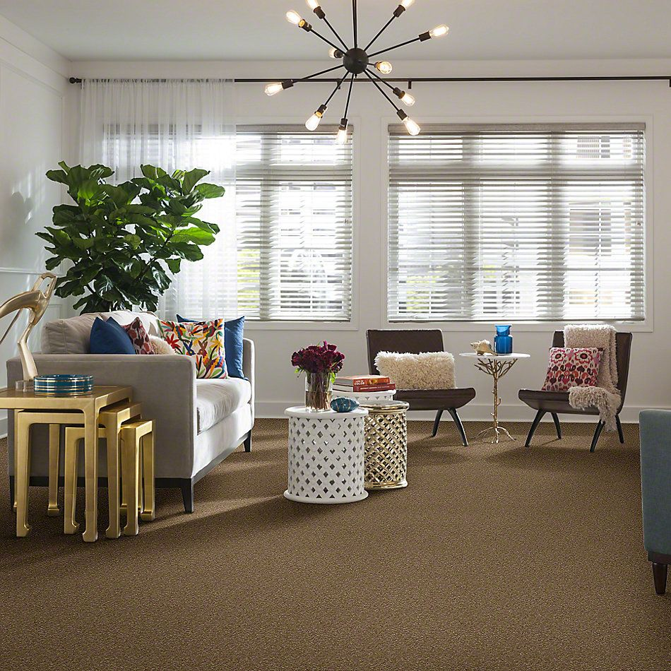 Shaw Floors SFA Awesome 4 Bridgewater Tan 00709_E0741