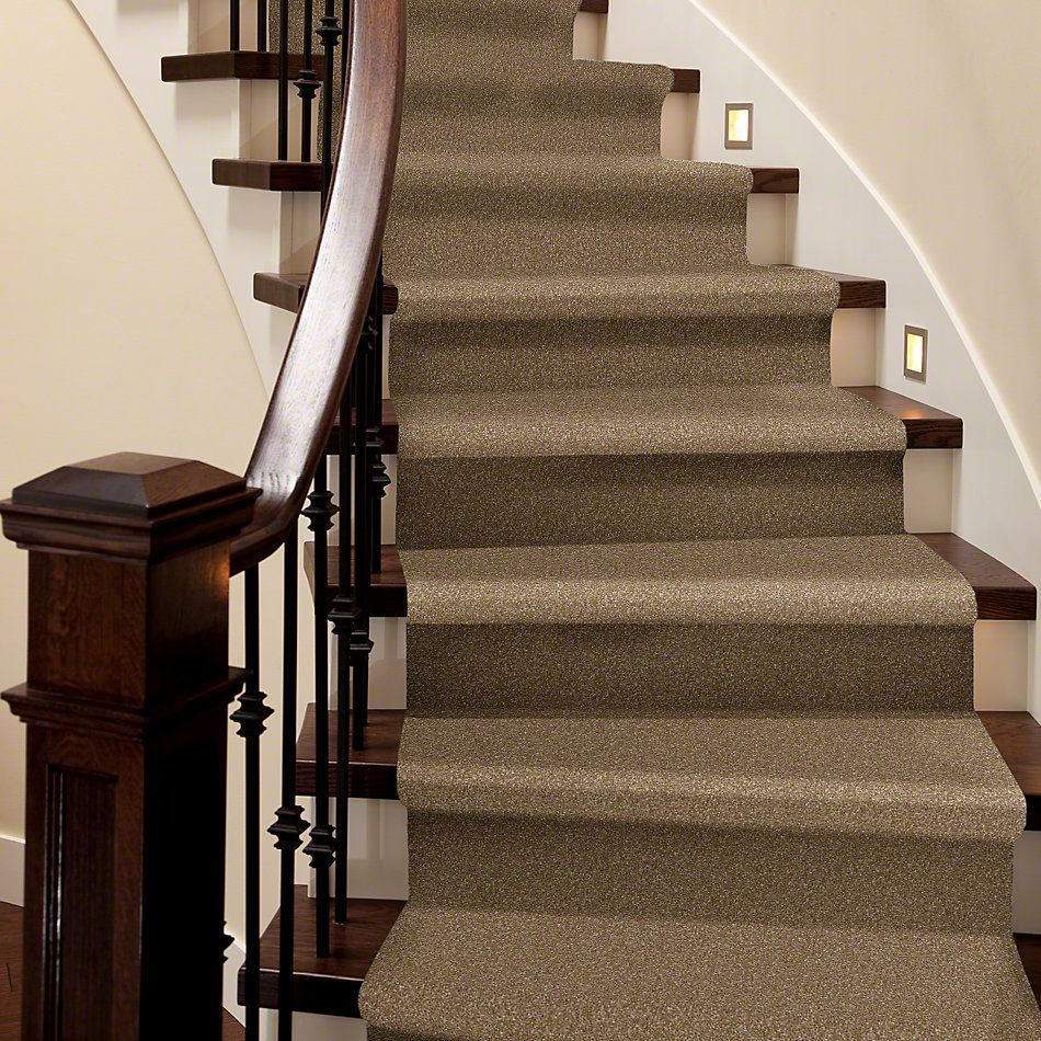 Shaw Floors Value Collections That's Right Net Bridgewater Tan 00709_E0925