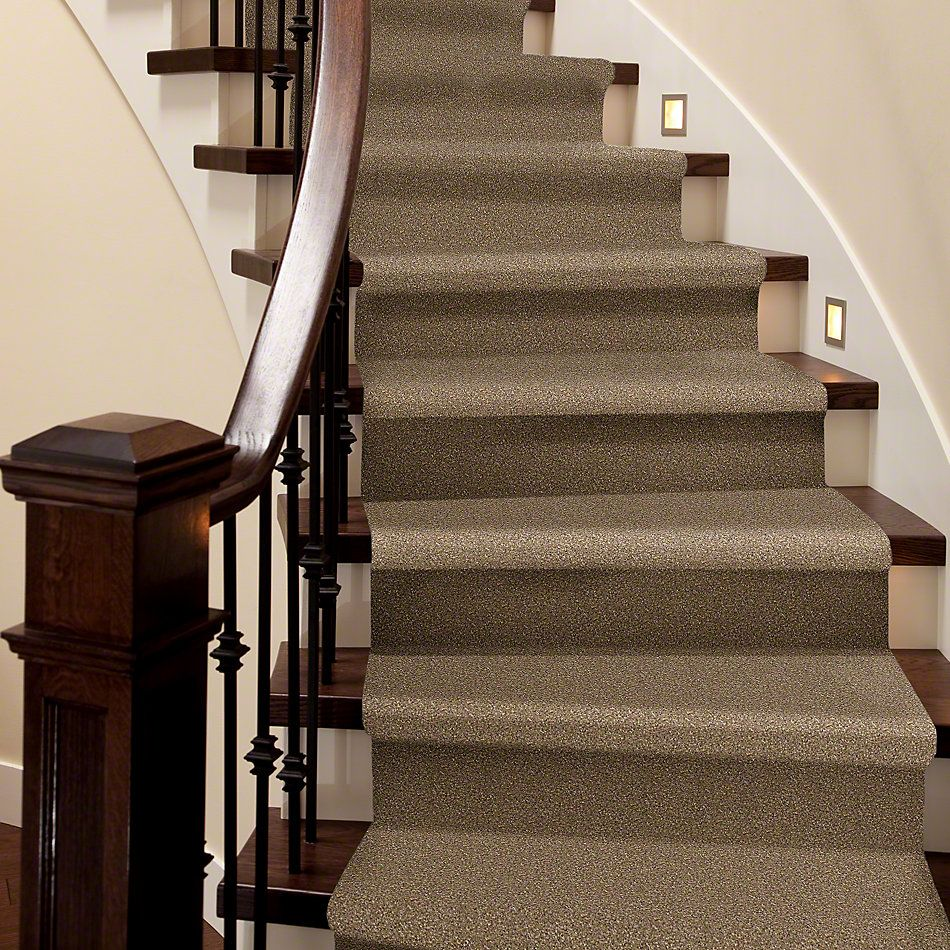 Shaw Floors Value Collections You Know It Net Bridgewater Tan 00709_E0927