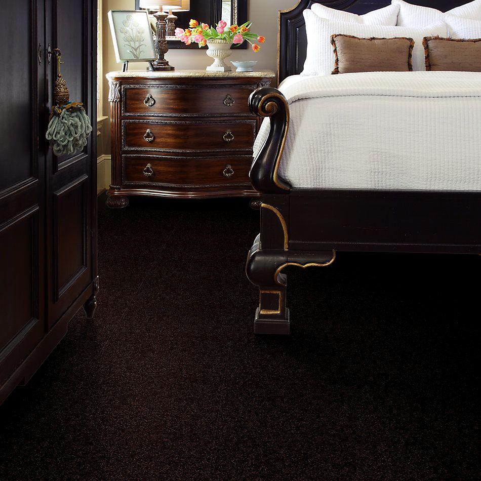 Shaw Floors Value Collections Passageway 3 Net Dark Roast 00709_E9377