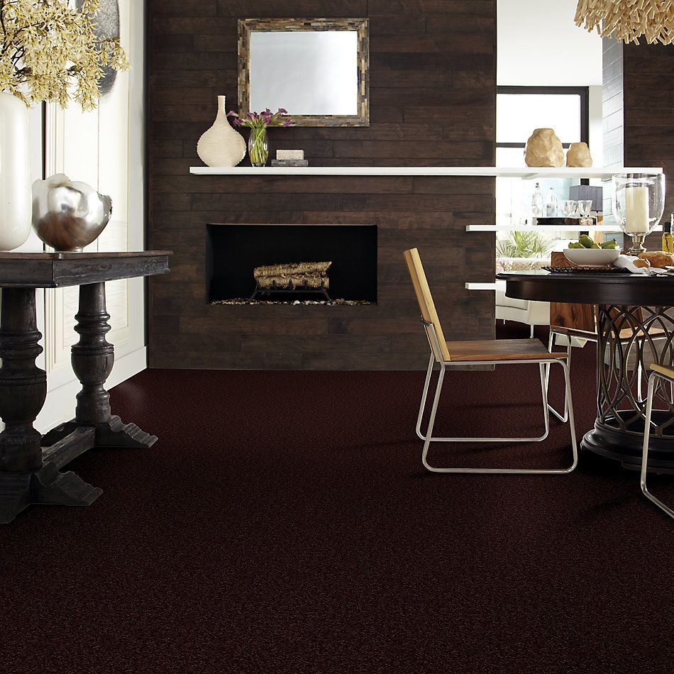 Shaw Floors Value Collections Passageway II 15 Net Dark Roast 00709_E9621