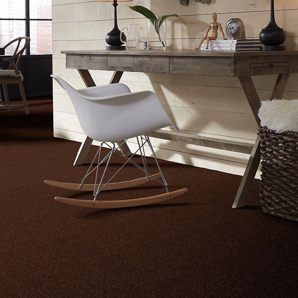 Shaw Floors Shaw Floor Studio Home News I 15′ Raisin 00709_FS129
