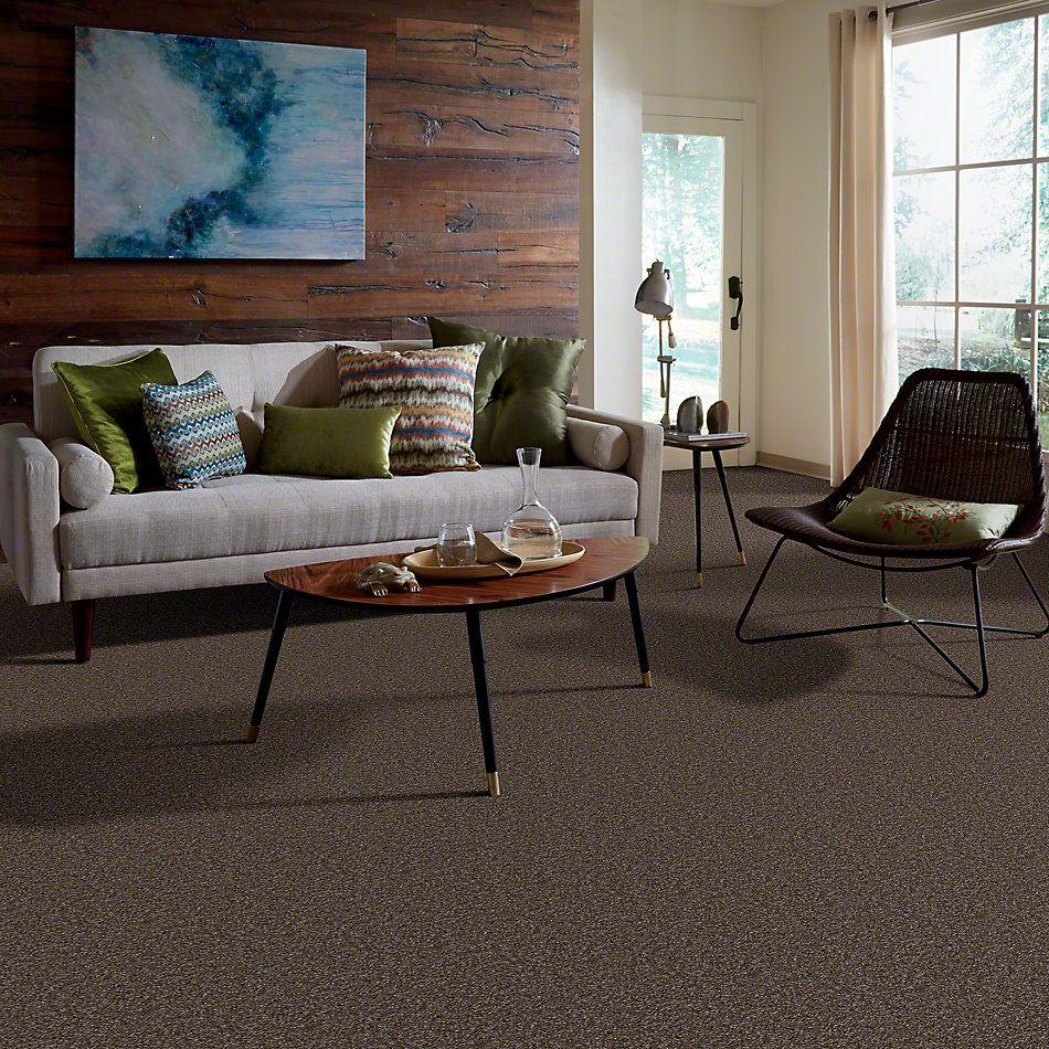 Shaw Floors Property Solutions Jetliner Kodiak Brown 00709_HF742
