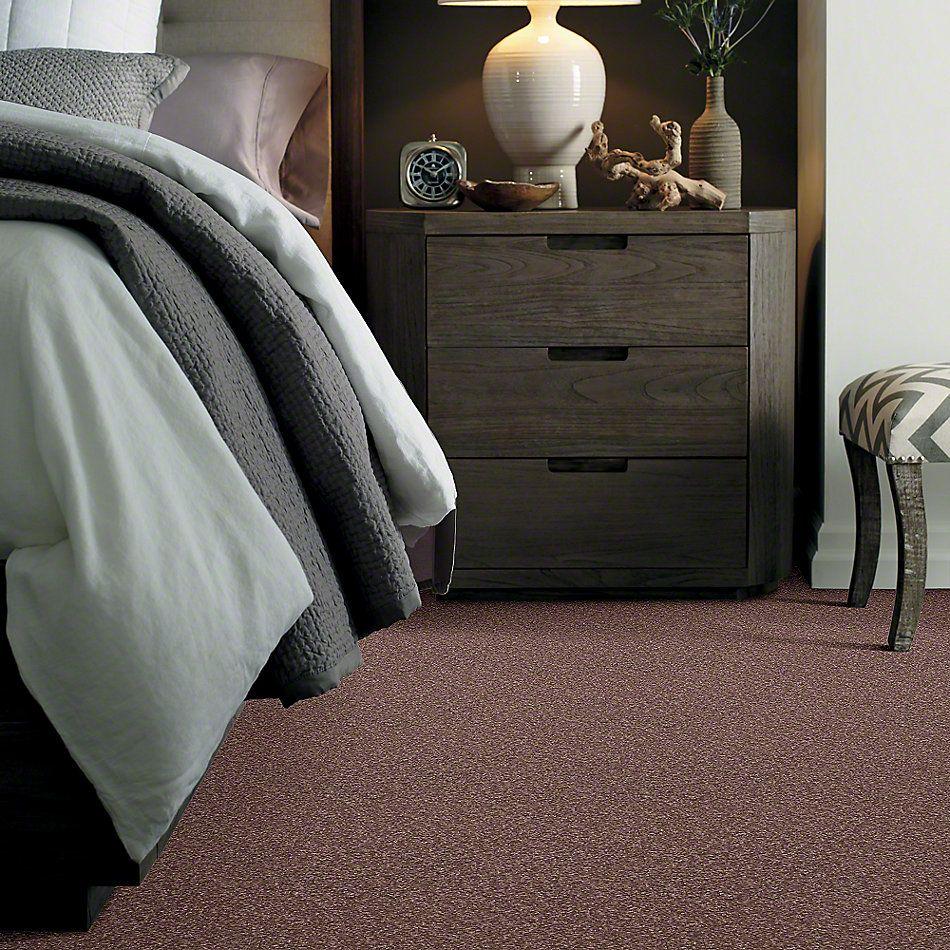 Shaw Floors Anso Premier Dealer Great Effect I 12′ Warm Oak 00709_Q4327