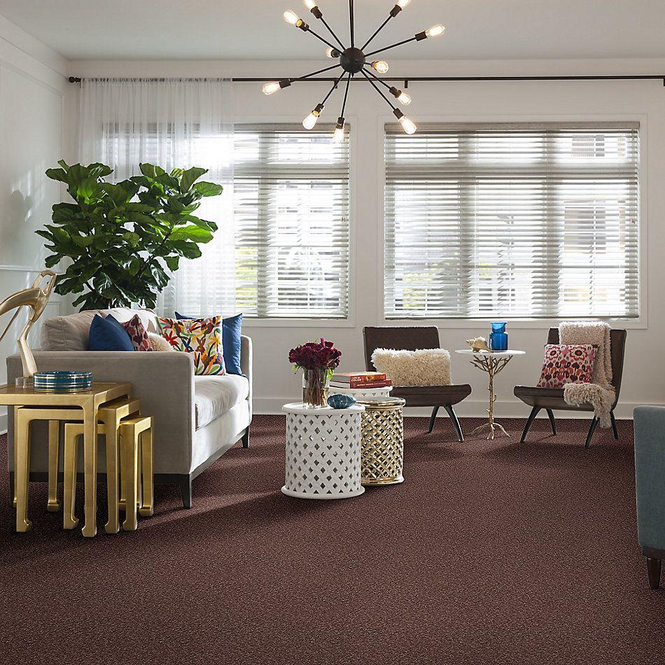 Shaw Floors Shaw Floor Studio Bright Spirit I 12 Warm Oak 00709_Q4648