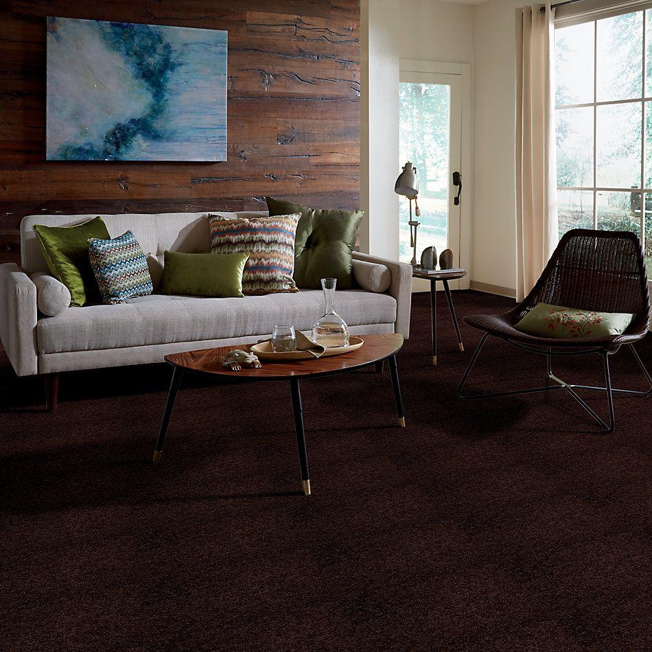 Shaw Floors Queen Our Delight I 15′ Dark Roast 00709_Q4681