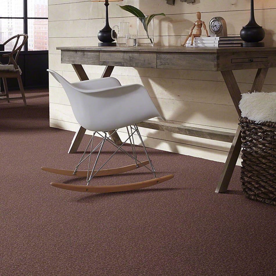 Shaw Floors Shaw Design Center Sweet Valley I 12′ Warm Oak 00709_QC420